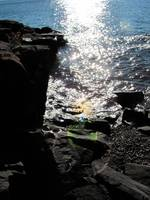 Rocky Shore in the Sparkly Sun