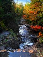 Cascade River Color Riot