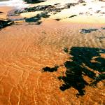 """""""Clear Water Gold - Indian Ocean"""" by JonathanCJPhoto"""