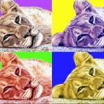 """lionchild popart"" by ArtsandDogs"