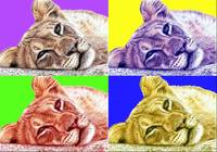 lionchild popart