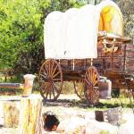 """Chuck Wagon"" by rdwittle"