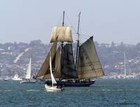 Sailing San Diego - Beautiful Boats Sail the Bay