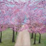 """Cherry Tree Drive"" by Rachelheath"