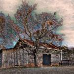 """""""Out Behind the Electric Woodshed"""" by geoffallen"""