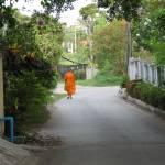 """Buddhist monk"" by photorose"