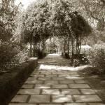 """Path to Romance"" by kyaudeart"