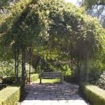 """""""Huntington Garden Bench by K. Yaude"""" by kyaudeart"""