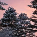 """Snowset"" by KathrynAeddy"