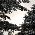 """December Sun"" by KathrynAeddy"