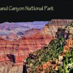 """Grand Canyon Poster"" by Sari_McNamee"