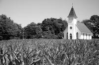 Church & Corn