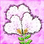 """valentineflower"" by jwilliamd"