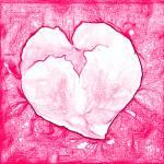 """""""pinkheart"""" by jwilliamd"""