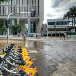 """Riparian Plaza During 2011 Floods"" by urban"