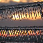 """Barbed Ice VI"" by Aleta"