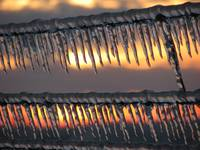 Barbed Ice VI