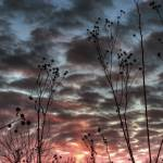 """January Sky at Sunset by Jim Crotty"" by jimcrotty"