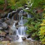 """Waterfall"" by raetucker"