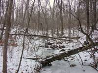 Frozen Creek 2