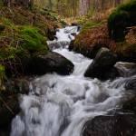 """""""El arroyo de la Chorranca"""" by photojosepalomo"""