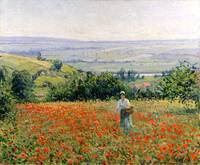 Woman in a Poppy Field by Leon Giran-Max