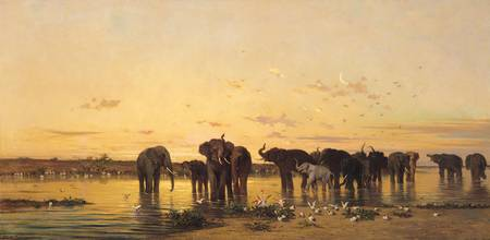 African Elephants, by Charles Emile de Tournemine