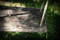 Willow Tree Swing