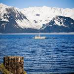 """Tied up in Seward"" by imagesbyc"