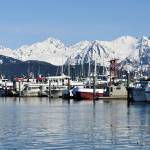 """Boats in Seward Alaska"" by imagesbyc"