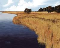 Golden Marsh