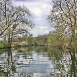 """Along The River Avon In Springtime"" by rosemariesw"