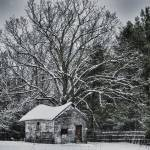 """Forgotten Dreams in Winter"" by fotographics"
