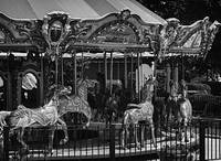 Black and White Merry-Go- Round