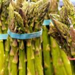 """Asparagus"" by raetucker"