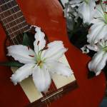 """Guitar with lilies"" by Geoffrey_Angel-Attwood"