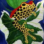 """Poison Dart Frog"" by oenonehammersley"