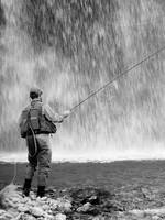 Fishing at Gibbon Falls, Yellowstone