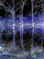eerie lake midnight.jpg