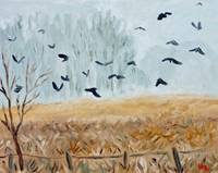 Foggy field with crows