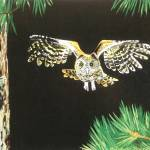 """Saw Whet Owl"" by Miranda_Barnhardt"