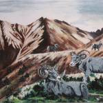 """Bighorn Sheep"" by Miranda_Barnhardt"