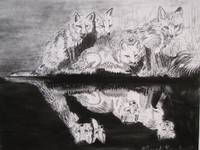 Foxes (charcoal)