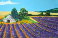Lavender fields 2 (after noon)