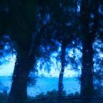 """""""Rain"""" by drmoto"""