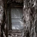 """""""@ the Door..."""" by igphotos"""