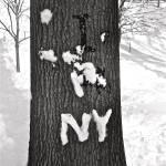"""""""I Heart NY"""" by drewkimm"""