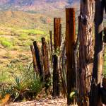 """Dividing Line - Rustic Western Wood Fence"" by JMcQ"