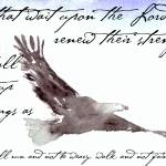 """Flying Eagle Watercolor with Isaiah 40:31 Overlay"" by nataliecardon"