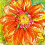 """Orange Tropical Daisy Watercolor"" by nataliecardon"